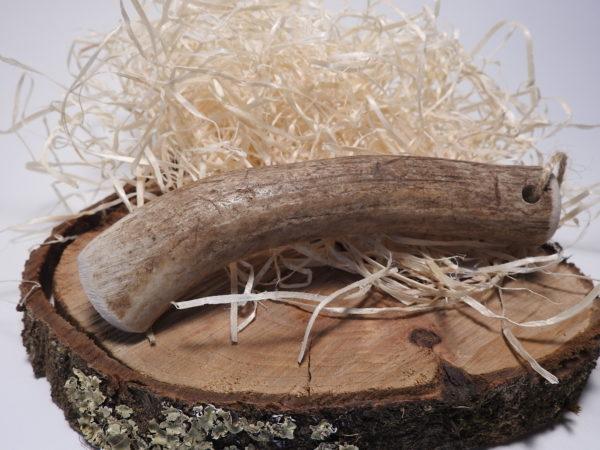 bois de cerf entier M